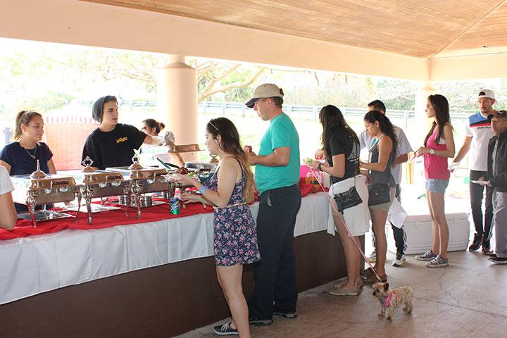Banyan picnic buffet line